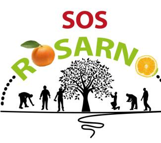 Aktion der Weltläden: Wir holen Orangen nach Münster!